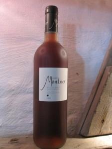 Vine fra Påsketur 2014 042